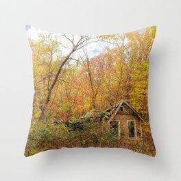 Seasons Pass Throw Pillow