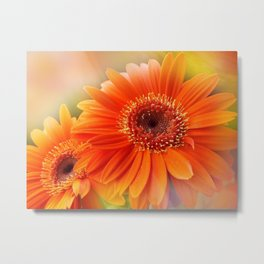 the beauty of a summerday -48- Metal Print