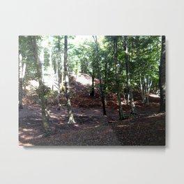 The wood 2 Metal Print