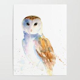 Evening Barn Owl Poster