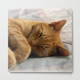 Sweet Dreams Metal Print