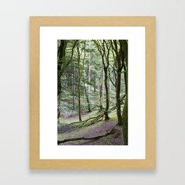 Trees - Rold Skov Gerahmter Kunstdruck