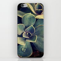 succulent iPhone & iPod Skins featuring Succulent by KunstFabrik_StaticMovement Manu Jobst
