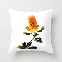 Beautiful Australian Banksia Flower Throw Pillow
