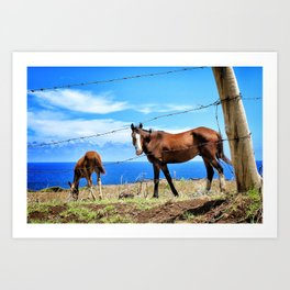 Horses against a blue sky Art Print