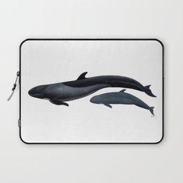 False killer whale Laptop Sleeve