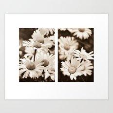 daisy diptych Art Print