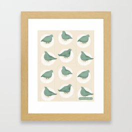 I got pigeons on my roof Framed Art Print