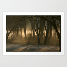Morning Fog Art Print
