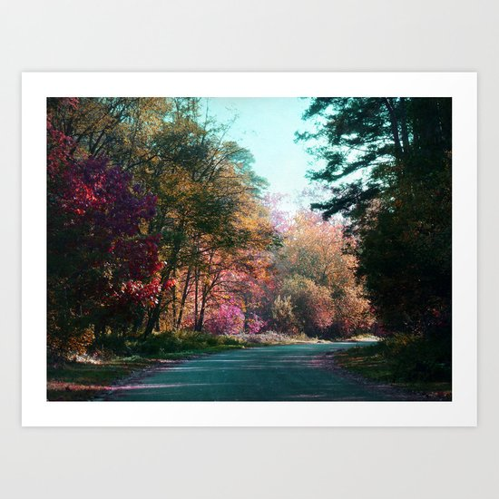 The road through the forest Art Print