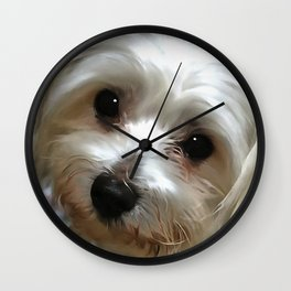 White Haired Street Dog Portrait Wall Clock