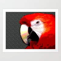 parrot Art Prints featuring Parrot by Crayle Vanest