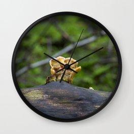 Fungal remains Wall Clock