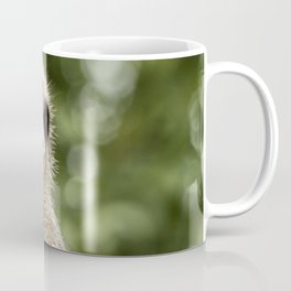 Slender Tailed Meerkat Coffee Mug