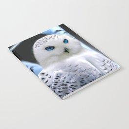 Blue-eyed Snow Owl Notebook
