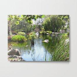 Chase Palm Park Pond Santa Barbara Metal Print