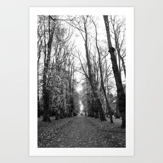 Leafy Walk Art Print