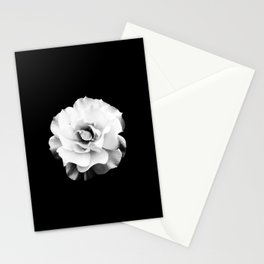 Black and White Rose Blossom... Stationery Cards