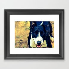 Do I Look Pretty?  Framed Art Print