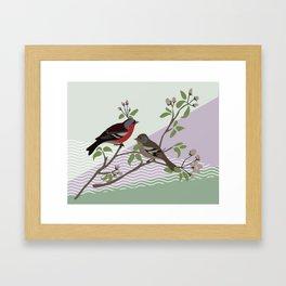 loving chaffinches Framed Art Print