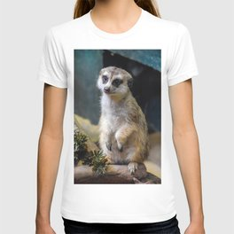 Huh? What'd you Say?? T-shirt