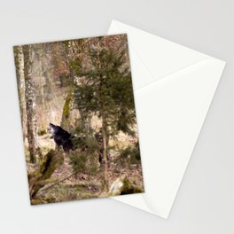 Timber Stationery Cards