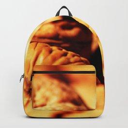 Walnuts Backpack