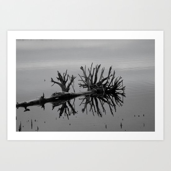 Image in Black and White Art Print