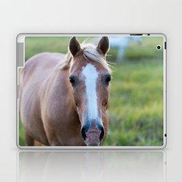 Silver I Laptop & iPad Skin