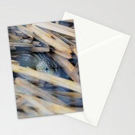Mr. Lagarto Stationery Cards