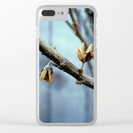 Flowering Seed Pods Clear iPhone Case