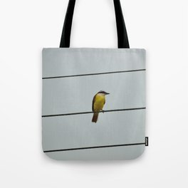 Great kiskadee Tote Bag