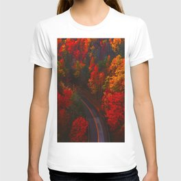 Autumn Forest Aerial (Color) T-shirt