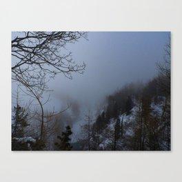 Winter Wanderland Canvas Print