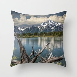 Tree Stump on the Northern Shore of Jackson Lake at Grand Teton National Park Throw Pillow