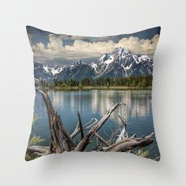 Tree Stump on the Northern Shore of Jackson Lake at Grand Teton National Park Throw Pillow