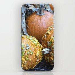 Longwood Gardens Autumn Series 332 iPhone Skin