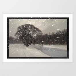 Out of the window... Art Print