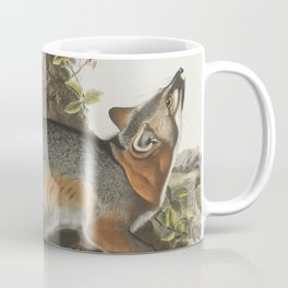 Vintage Illustration of a Grey Fox (1843) Coffee Mug