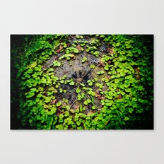 Overgrowth Canvas Print