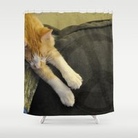 whisky Shower Curtains featuring Peaceful Cat by talonJstudios