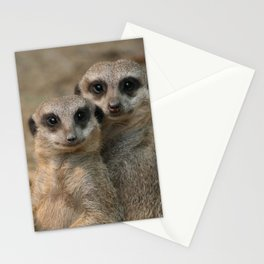 Meerkat_20170901_by_JAMFoto Stationery Cards