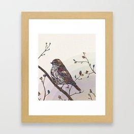 Kaleidoscape Framed Art Print
