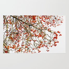 Red rowan fruits or ash berries Rug