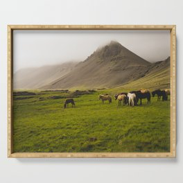 Herd of Horses Grazing in Meadow in Iceland Serving Tray