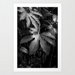 Leaves, Hida-Takayama, Japan Art Print