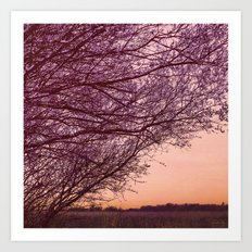 Purple Tree, Coral Sky Art Print