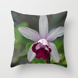 Cattleya Orchid (The Corsage Orchid) Throw Pillow