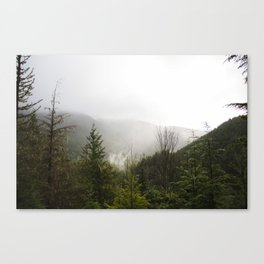 Olympic Overlook Canvas Print