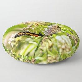Monarch Beauty Floor Pillow